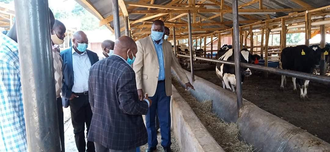 Government officials at Peter Chirchir's farm