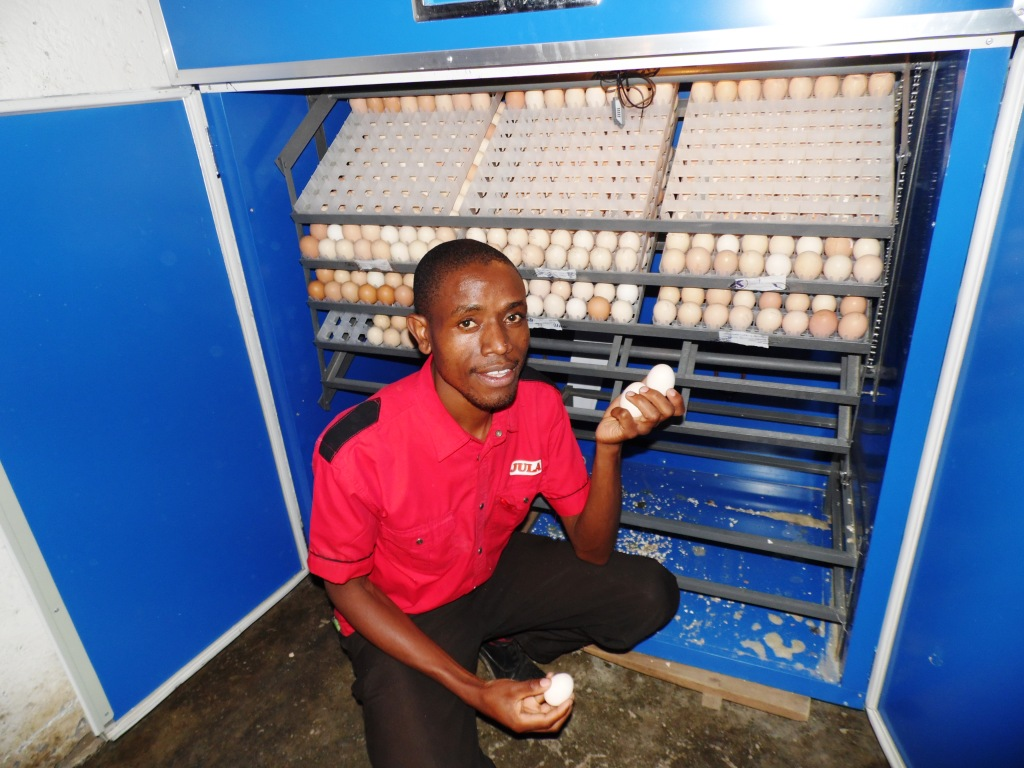Eggs Nakuru Laban Robert By Mary Njeri.JPG