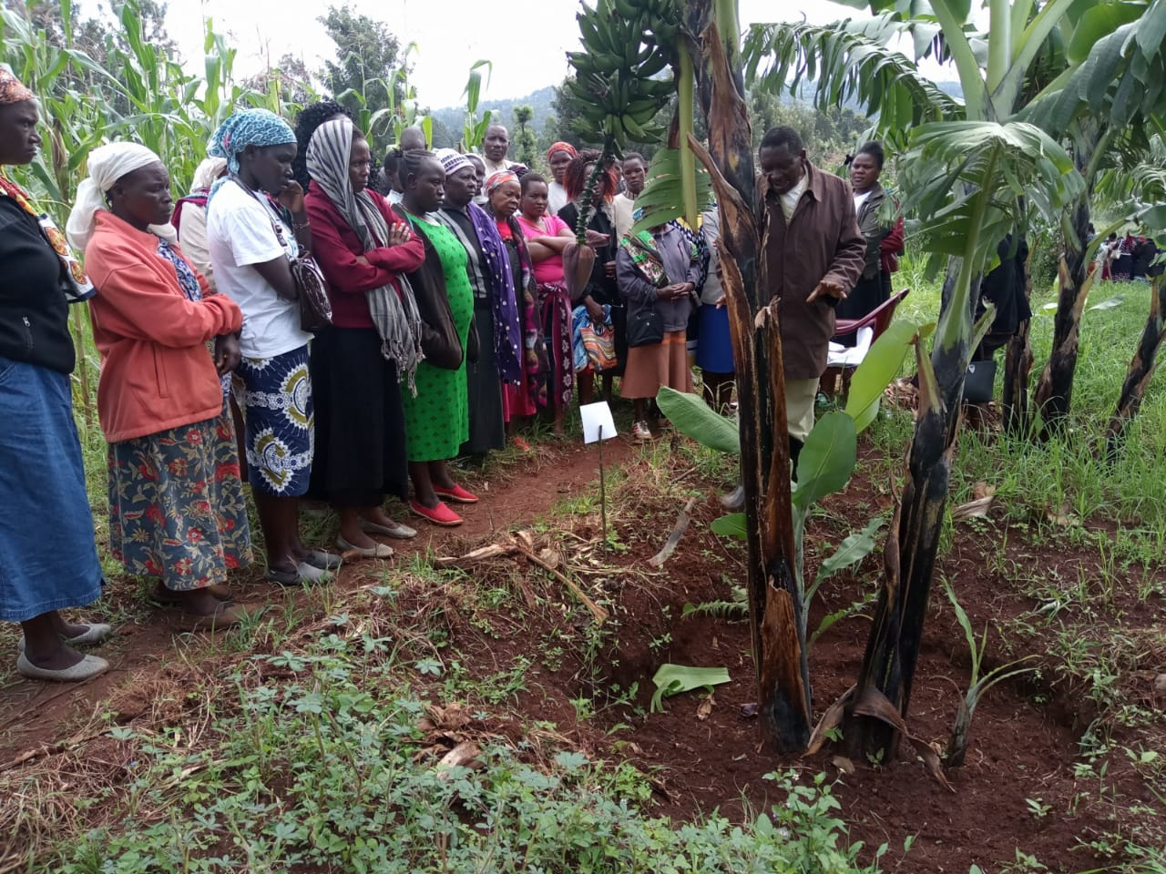 Farmers at a past event in Nyamira County