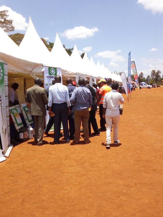 Muranga avocado exhibition and conference