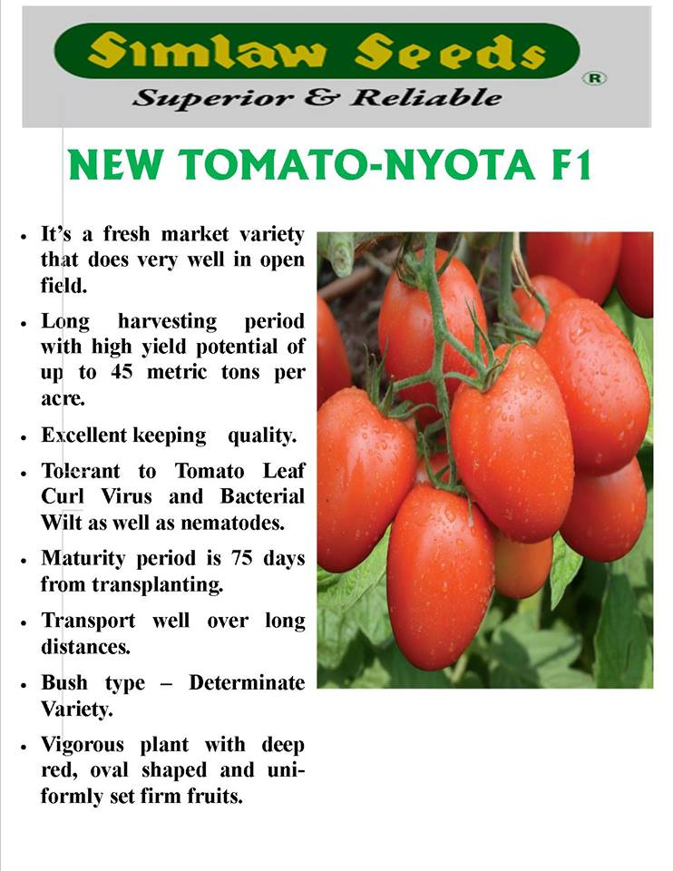 Simlaw Seeds introduces new high yielding tomato variety