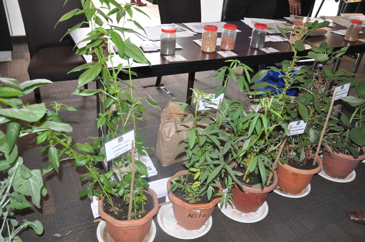 Some of the AIVs on display at the JKUAT stand