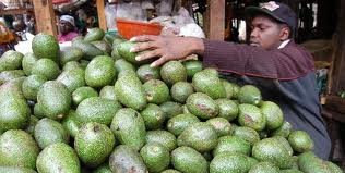 avocado-market.jpeg