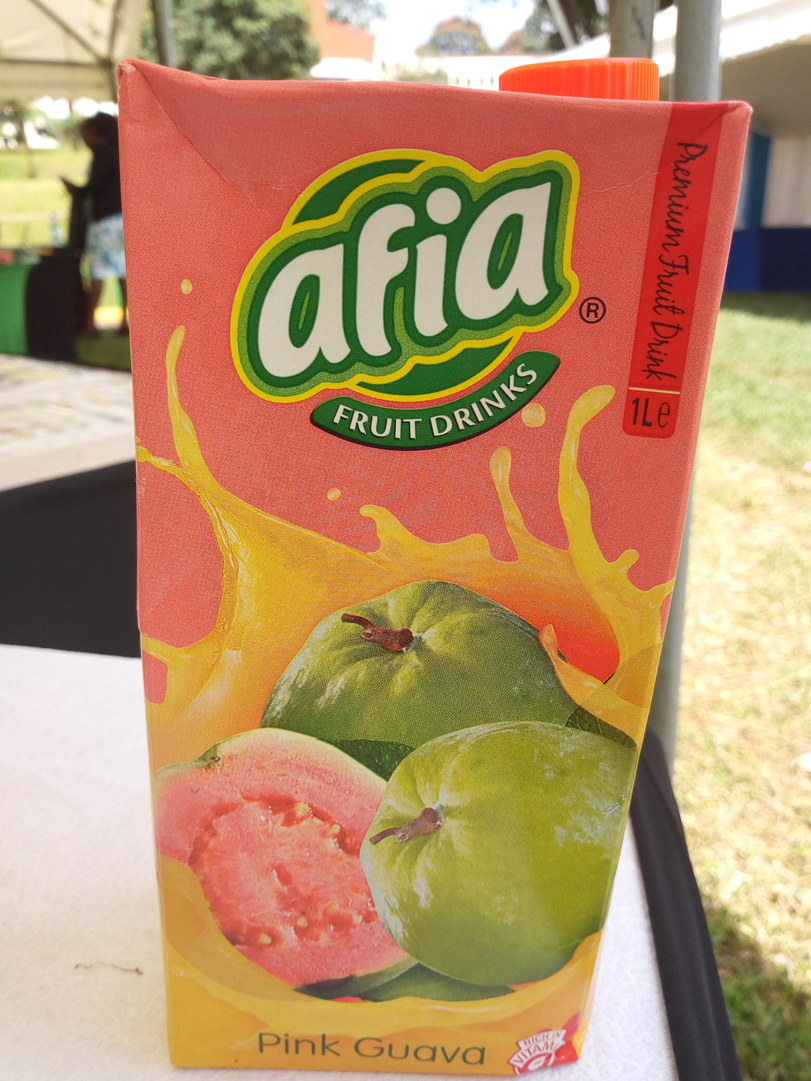 KALRO gives Busia farmers 55,000 free guava, gooseberry and