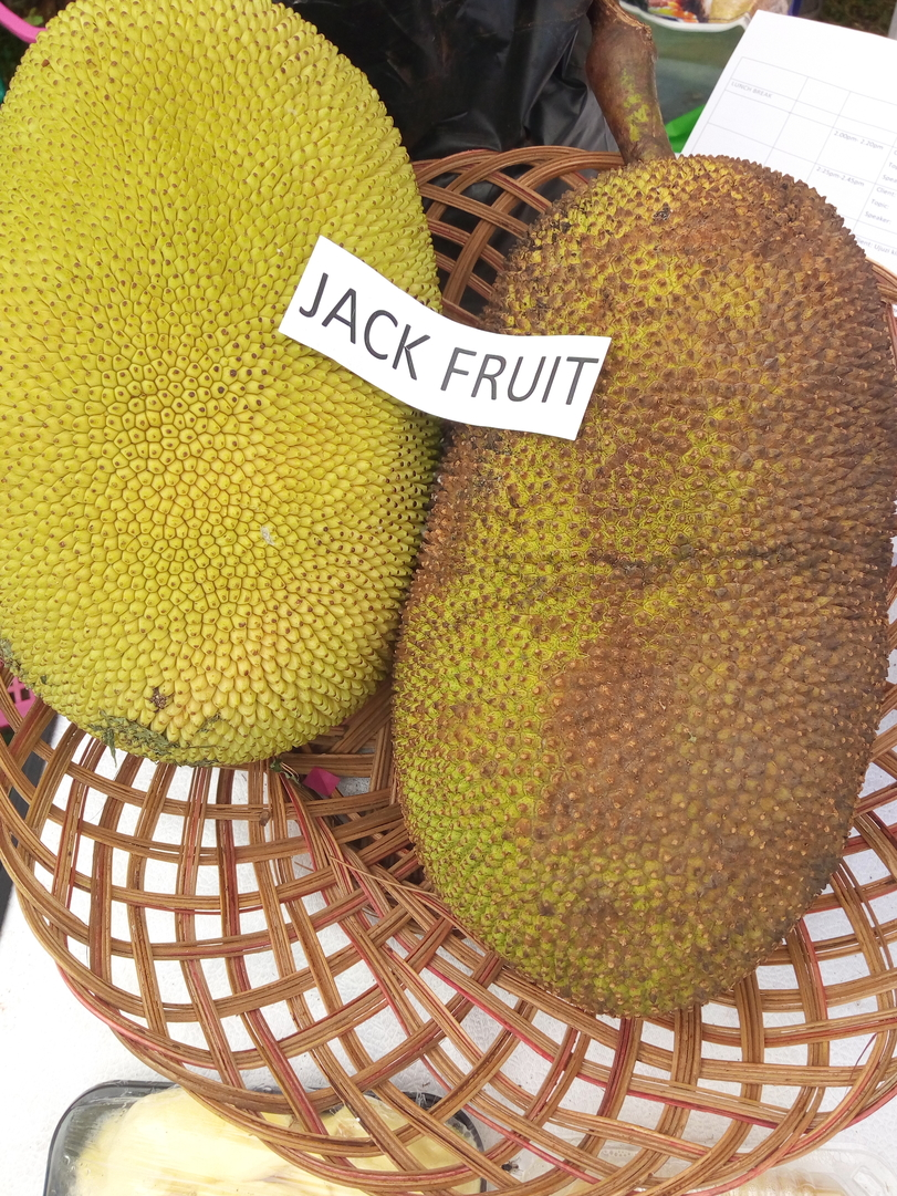 KALRO gives Busia farmers 55,000 free guava, gooseberry and jack