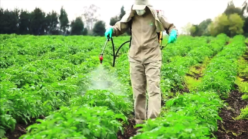 pesticide application safe